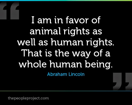 human superiority over animals Since the beginning of humanity's intellectual discourse, it can be seen that humans have a view of superiority over animals we have utilised this sense of.