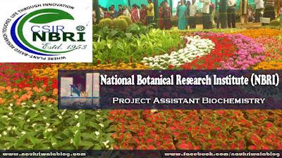 Project Assistant Biochemistry Job 2015