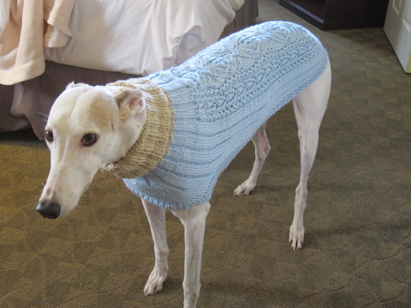 Greyhound Knit Sweaters: Donation coat