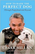 Cesar Milan - How To Raise The Perfect Dog