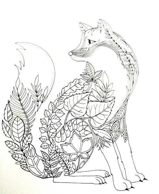 róka fox