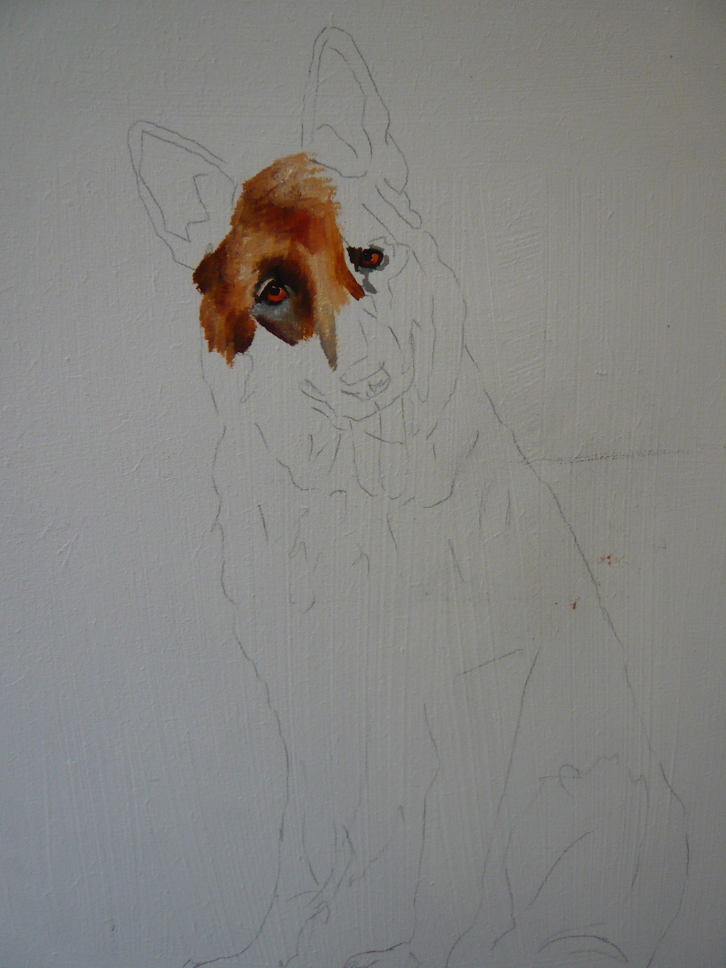 2nd work in progress photo of a German Shepherd, painting the eye. A pet portrait by Karen.