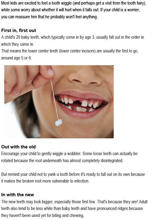 Which baby teeth fall out