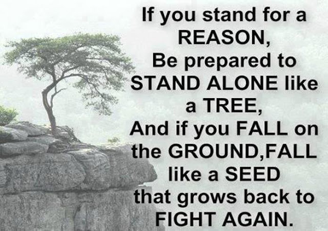 Quotes About Standing Your Ground. QuotesGram