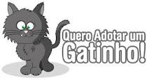 Quero adotar um gatinho