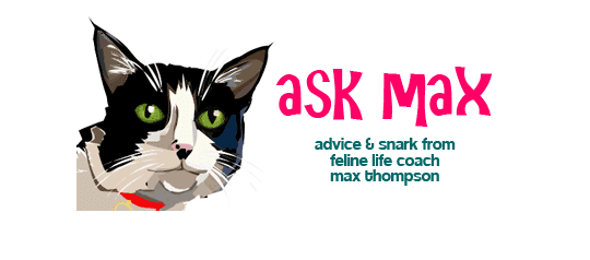http://mousebreath.com/2014/05/ask-max-monday-noms-canned-noms/