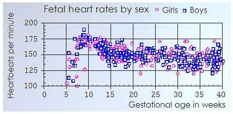 Fetal Heart Rate Sex 22