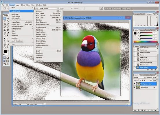 Adobe PhotoShop CS2 Full Download Key. Аренда башенного крана или покупка