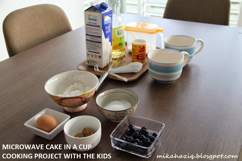 Mikahaziq cooking project with the kids blueberry for Recipe for cake in a cup in the microwave