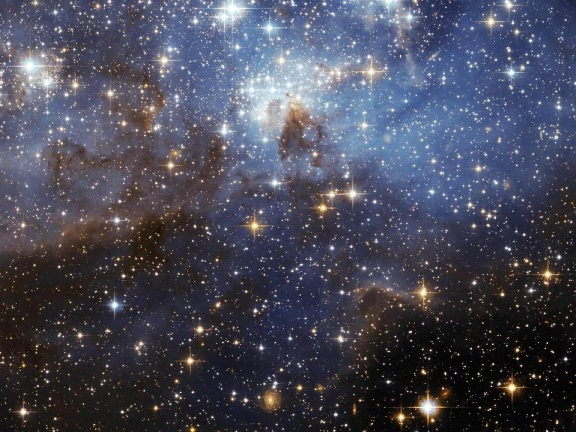 "There is an astounding number of stars, and a large variety of them, often frustrating ""deep time"" secular scientists. What is more amazing is that their Creator also created and cares for us."