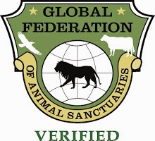 DoubleHP is proud to be South Dakota's first and only GFAS Horse Sanctuary