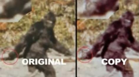 Patterson Film Analyzed