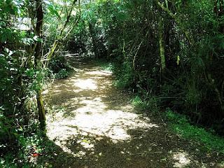 Sendero Macuco, no Parque Nacional de Iguazú, em Puerto Iguazú.