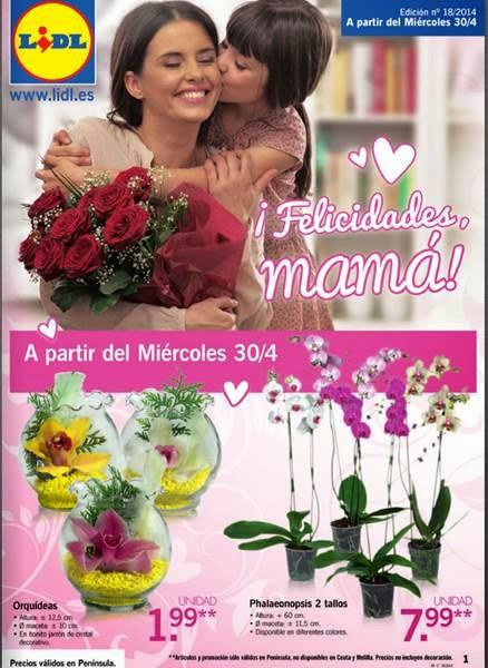 lidl catalogo felicidades mama 2014