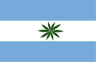 Inconstitucional punição a cultivo de maconha declara Argentina