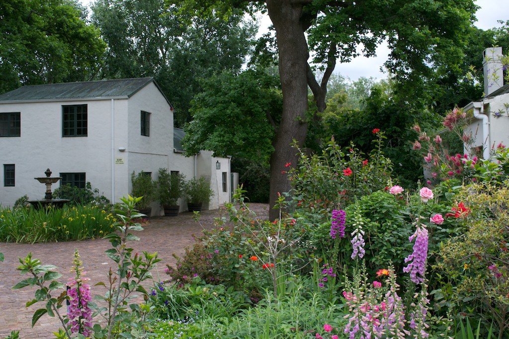 Driftwood Ramblings: Klein Champagne [Franschhoek Open Garden 2011]