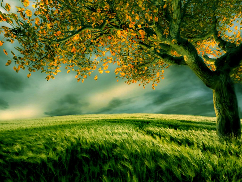 Beautiful Digital Scenery Wallpaper
