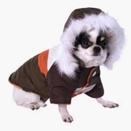 Dog_Clothing