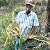 Pequeños productores agropecuarios advierten sobre la concentración del sector