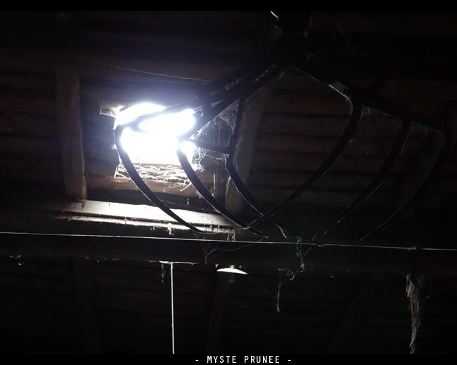 Gallerie Photo [Myste Prunee] DSC01001