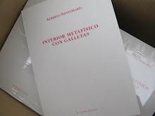 """""""INTERIOR METAFÍSICO CON GALLETAS"""" (El gaviero ediciones, 2012)"""