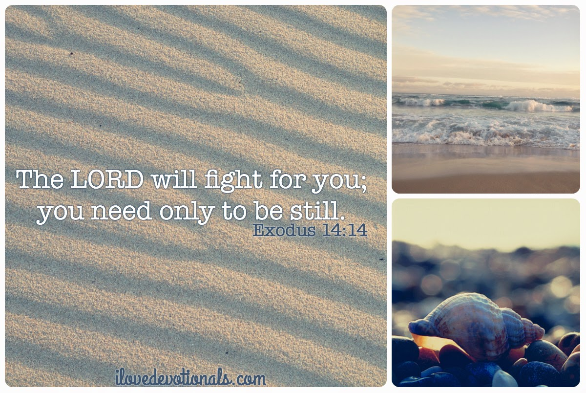 The Lord will fight for you; you need only to be still
