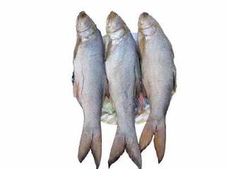 Món ăn ngon: Cơm chiên cá mặn