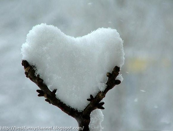 Snow in the form of heart