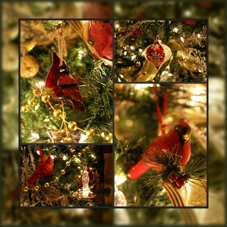 Lindas Life Journal A Red Cardinal Christmas Tree : Picnikcollagecardinals from lindaslifejournal-artlady1948.blogspot.com size 1224 x 1224 jpeg 400kB
