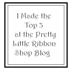 Pretty Little Ribbon Shop #17