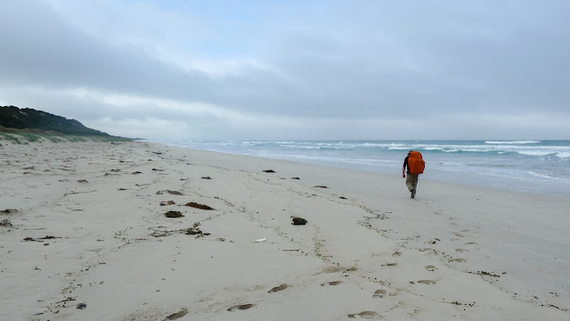 walking on sandy beach