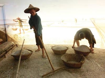 Salt Trading Business in Taiwan