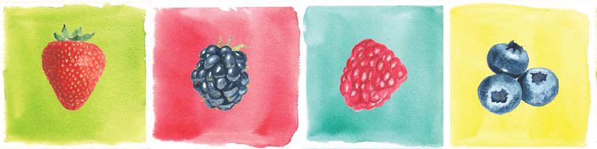 Azienda Agricola Lilliput i Piccoli Frutti della terra