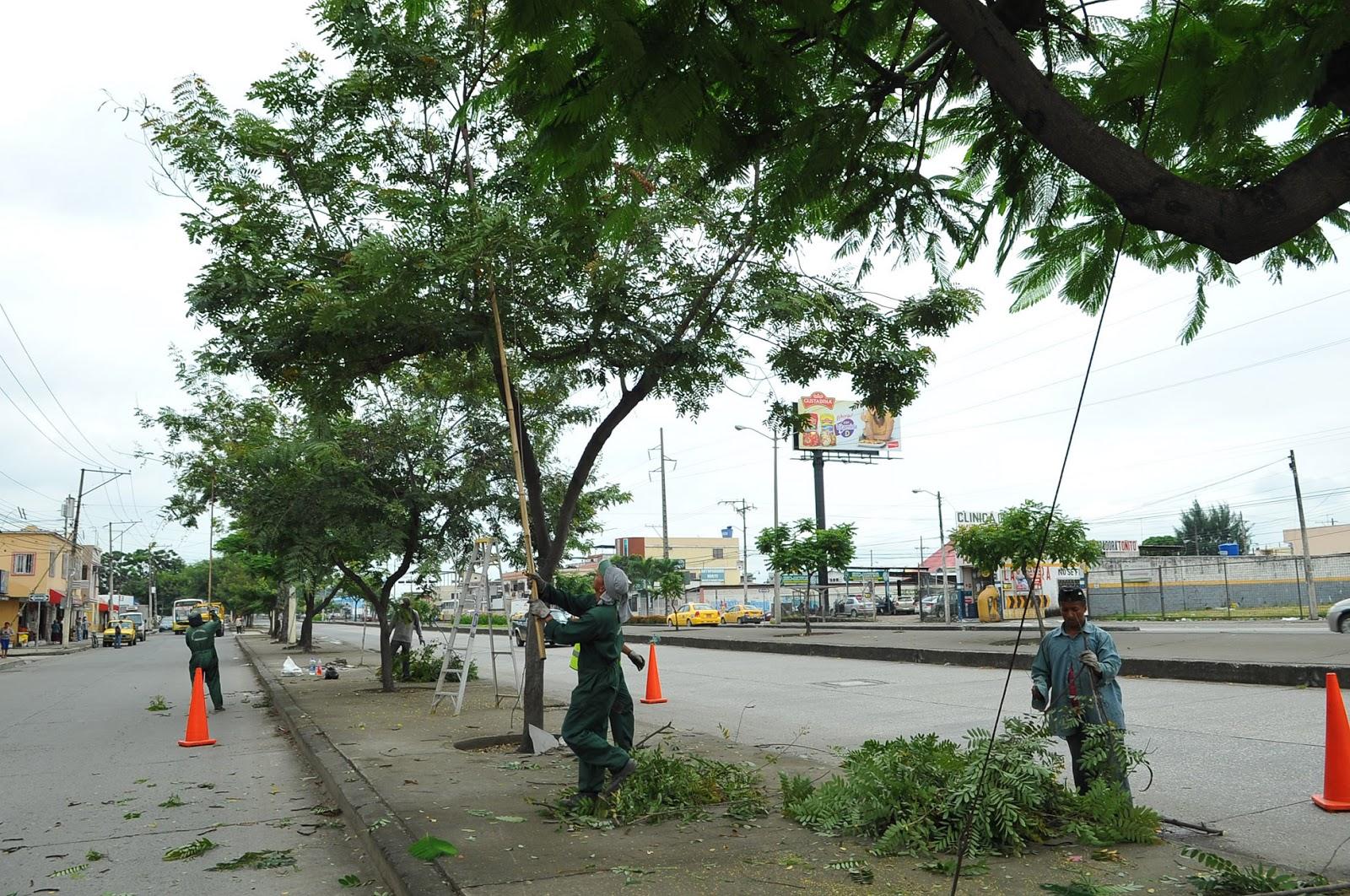 Blog Municipio De Guayaquil Inici