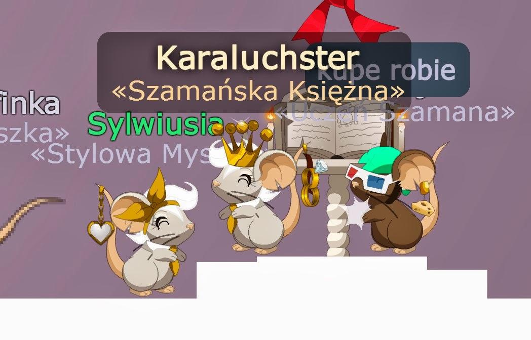 Kara dla myszki - 2 10