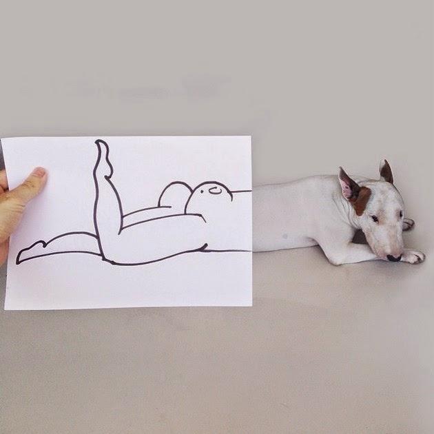 bull-terrier-3