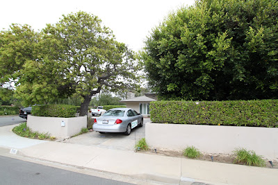 side drive way with tree