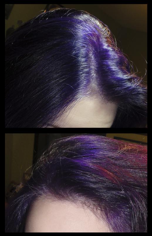 Net S Little Corner Purple Hair Ion Color Brilliance