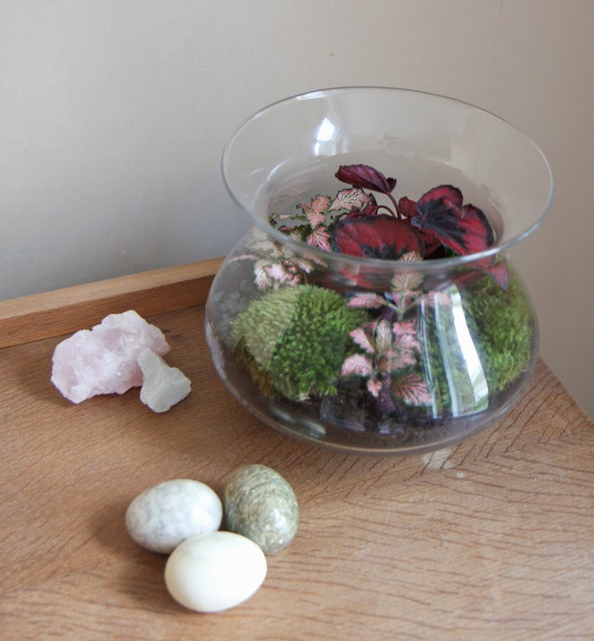 Terrarium making with Botanique by Alexis at www.somethingimade.co.uk