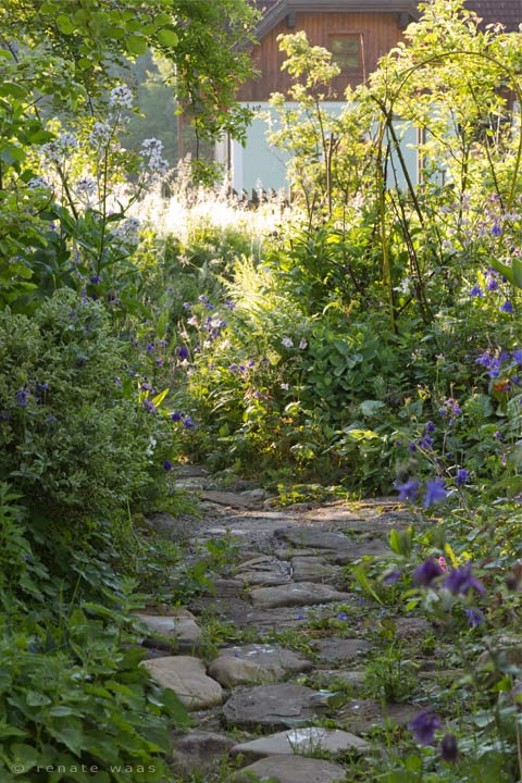 Gartenblog geniesser garten zu besuch im garten von lisl - Geniesser garten ...