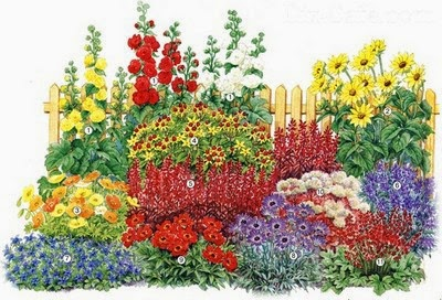Цветники и клумбы из многолетников своими руками фото 281