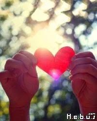 vivre à partir du cœur Teal Swan