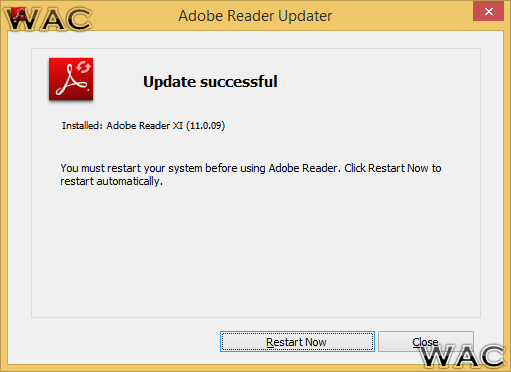 adobe reader update windows