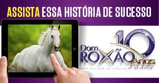 A HISTORIA DE ROXÃO