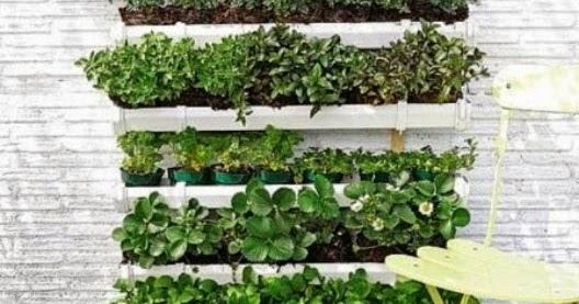 Vida ecoverde como hacer un jard n vertical con canaletas for Como se hace un jardin vertical