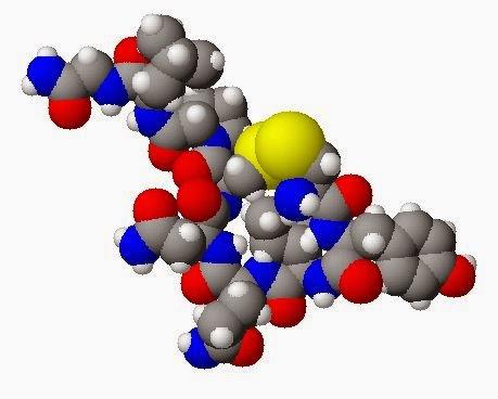 the hormone oxytocin cure autism spectrum disorder