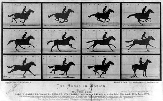 Serie original del caballo al galope, hecha por Muybridge en 1878