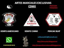 ARTE MARCIAL CDMX KENPO AMERICANO / KEMPO CHINO / PENCAK SILAT (PARQUE HUNDIDO / ALAMEDA SUR