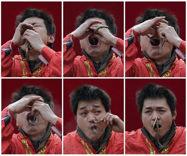 KOMBINASI gambar menunjukkan seorang lelaki memasukkan ular ke dalam hidung dan mulutnya di Kuil Ditan, Beijing semalam.