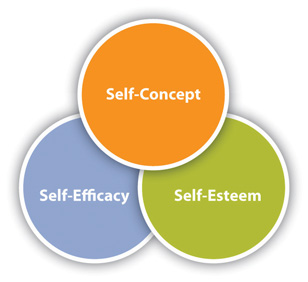 SELF CONCEPT, Relation between Self-concept and Self-esteem, CTET 2015 Exam Notes, KVS, DSSSB Study Material, CTET, NET PDF NOTES DOWNLOAD.